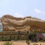 Consapevolezza del Buddha