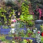 Todmorden: la Città autosufficiente in frutta e verdura