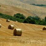 Abruzzo – Ex manager laureato alla Bocconi sceglie di fare l'eremita