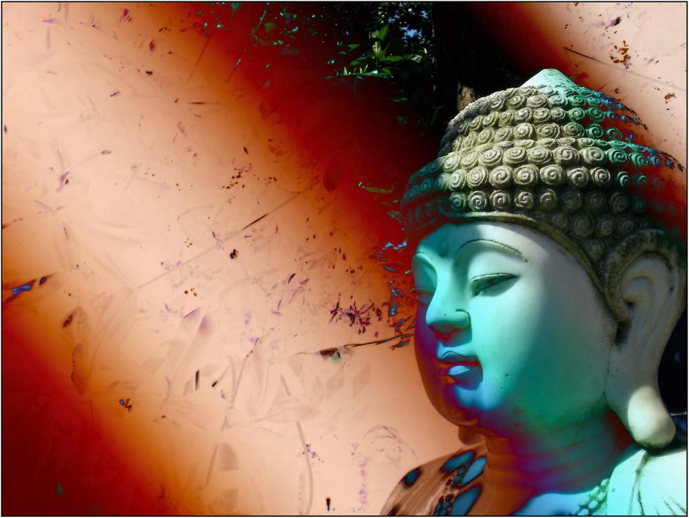 buddhasuono