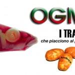 Arriva un altro diktat dell'Ue: è lecito coltivare Ogm in Italia. Ma il modo per difendersi c'è