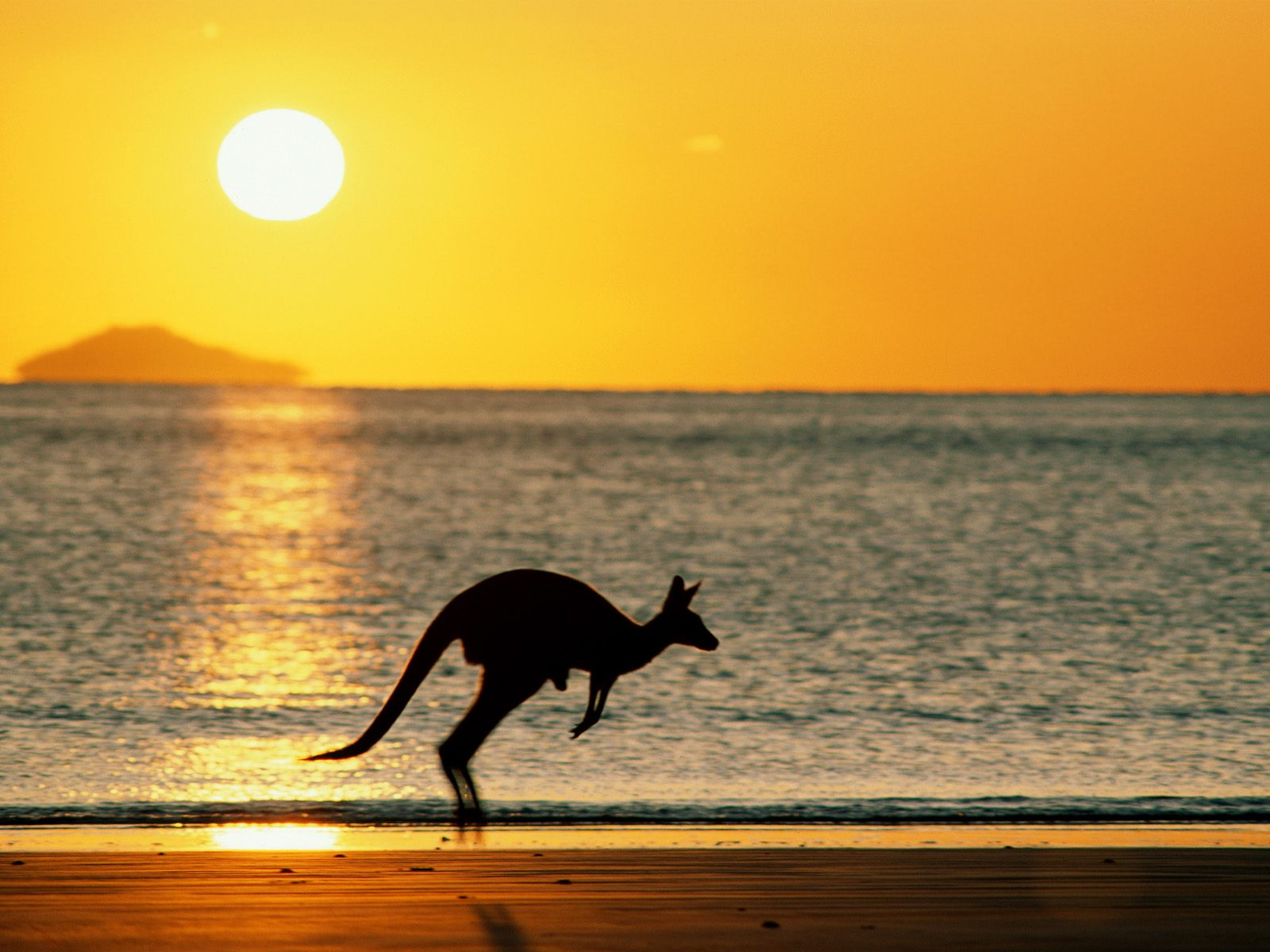 tour-to-australia-17-wallpapers-14