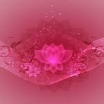 Ravanelli: ortaggi di stagione e rimedio naturale contro l'ansia