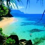 Pesticidi e test OGM alle Hawaii: salute ed ecosistema a rischio