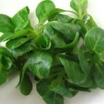 Come assumere proteine vegetali complete: ecco il segreto!