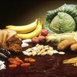 """Appello e invito a tutti i medici """"pro proteine animali"""" nella dieta umana"""