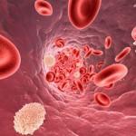 Il grande inganno del colesterolo