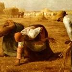 Agricoltura contadina: quasi 2 mila firme in una settimana!