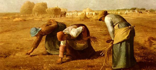 20121126_Agricoltura-contadina2
