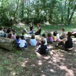 Fare scuola nel bosco: una realtà sempre più diffusa [Video]