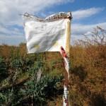 Terra dei fuochi: cosa non dice il rapporto del Governo