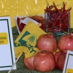 Veleni nel piatto: i 10 cibi di importazione piu' contaminati