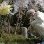 Fukushima: è ancora disastro