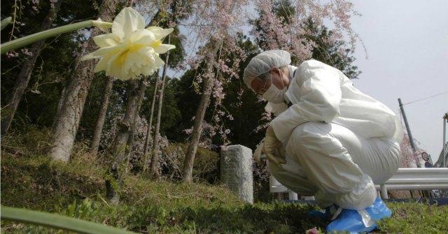 Fukushima-640