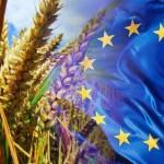"""Ogm, nuova """"filosofia"""" dell'Ue: se uno Stato non li vuole chieda l'esenzione alle multinazionali"""