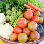 Confermato: il cibo da agricoltura biologica è diverso