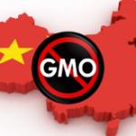 Ogm e Glifosato: conferenza a Pechino