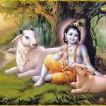 Apparizione di Sri Krishna