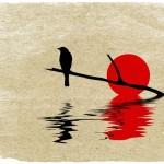 La terapia della compassione …