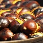 Castagne: 15 ricette di primi piatti, secondi e dolci