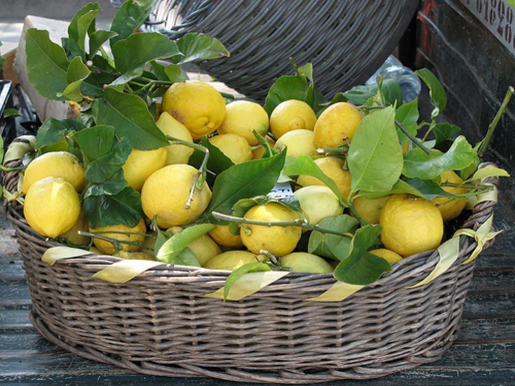 limoni-2
