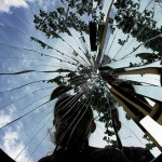 Come frammenti di uno specchio