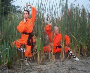 Alimentazione vegana come mangiano i monaci shaolin for Cucinare x diabetici