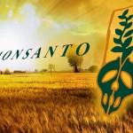 """""""Non sono stupido"""", un lobbista della Monsanto in tv si rifiuta di bere l'erbicida che """"non vi fa male"""""""