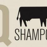 Q Shampoo: lo shampoo bio all'urina di mucca creato da un gruppo di studenti islandesi