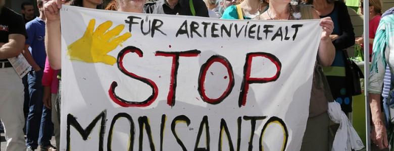 Monsanto-780x300